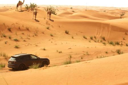 Porsche Cayenne testing