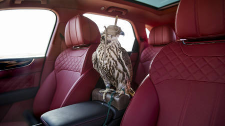 Bentley Bentayga Falconry